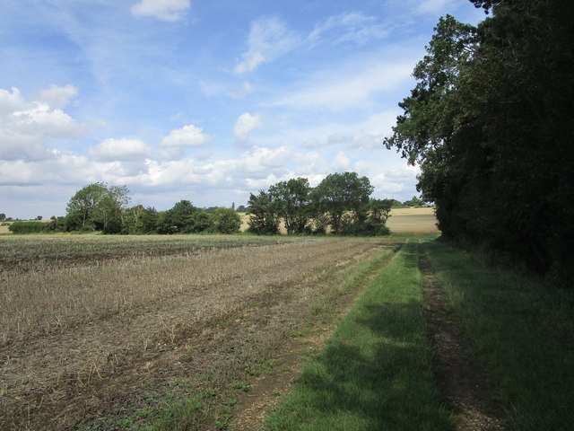 Footpath to Witham on the Hill