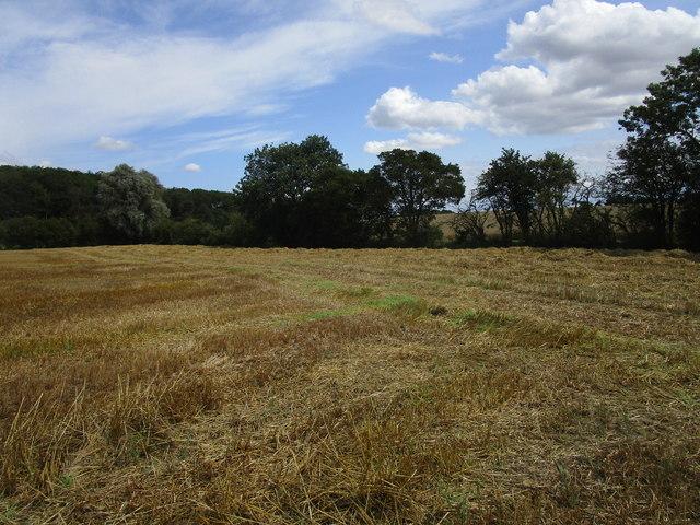 Corner of a stubble field