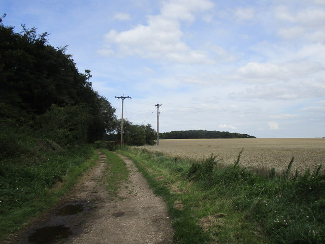 Bridleway north of Witham on the Hill