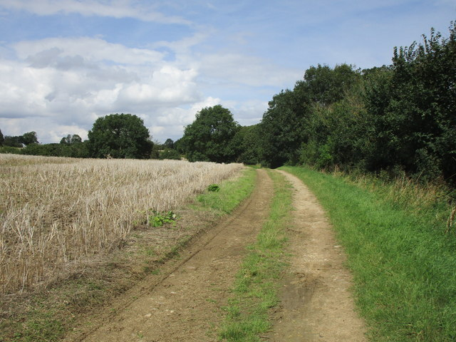 Bridleway on Fountains Hill