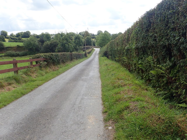 Descending Skerriff Road in the direction of Skerriff Bridge