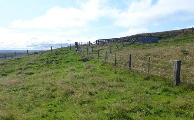 Two fences cross on Rackside