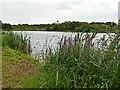 SK4542 : Manor Floods Lake by Graham Hogg