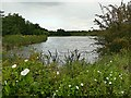 SK4541 : Manor Floods Lake by Graham Hogg