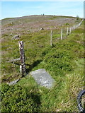 SJ1132 : Boundary Stone II on Mynydd Tarw by Richard Law