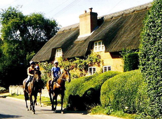 Race Horses, Kingston Lisle, Oxfordshire  2002