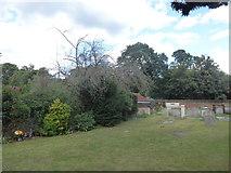 TQ1068 : St Mary, Sunbury-on-Thames: churchyard (g) by Basher Eyre