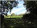 NZ1345 : Field gateway on Longedge Lane by Robert Graham