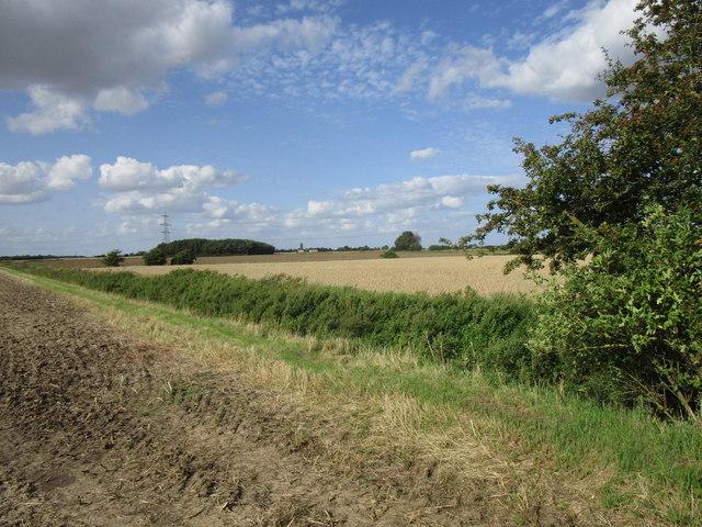 Donington North Fen