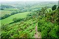 SO2676 : Offa's Dyke Path near Llanfair Waterdine by Jeff Buck
