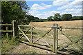 SU6360 : Field Gates, Ash Park by Des Blenkinsopp