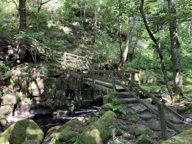Footbridge over Burbage Brook