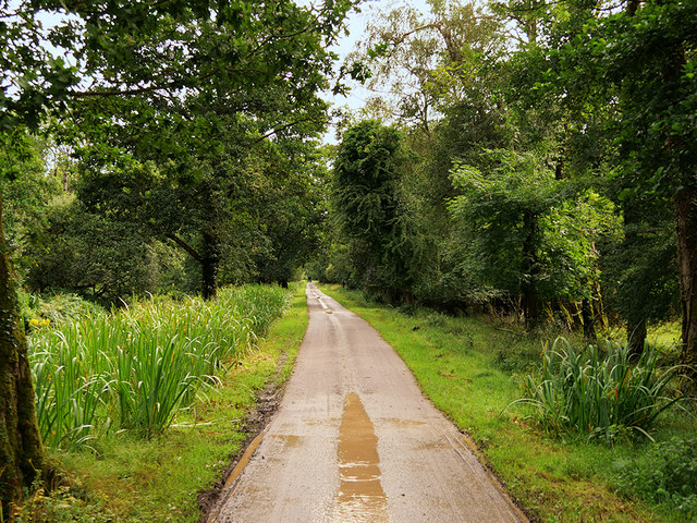 Riverside Walk, Killarney National Park