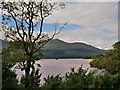 V9489 : Killarney National Park, Lough Leane by David Dixon