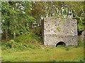V9489 : Disused Lime Kiln in Killarney National Park by David Dixon