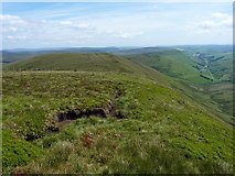 SJ0834 : NE ridge of Cadair Bronwen by Richard Law
