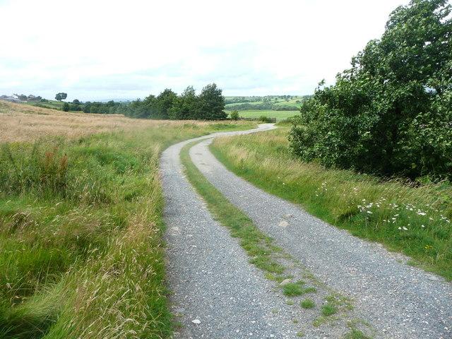 Driveway to Wildman's Barn, Clapham