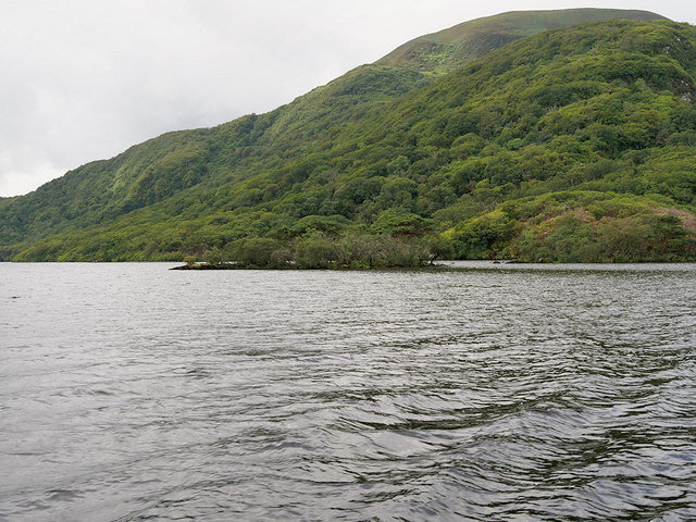 Small Island and Headland, Lough Leane