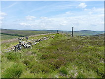 SJ0935 : Rock outcrop & fence above Careg-y-Caws by Richard Law