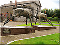 V9690 : Stags outside Killarney Courthouse by David Dixon