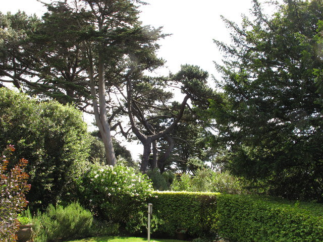 Garden of Chine Hotel, Boscombe, with mature trees