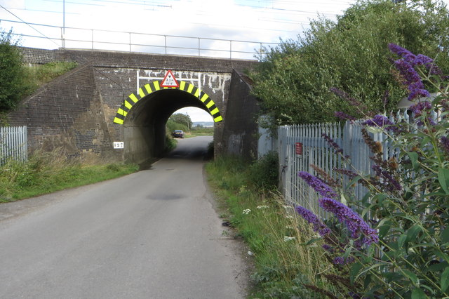 Bridego bridge and buddleja