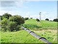 NZ2131 : Buried pipeline, emerging by Trevor Littlewood