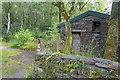 SH7504 : Stone Shed in the Woods by Des Blenkinsopp