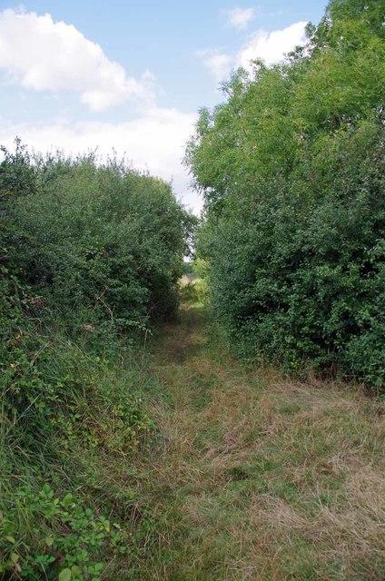 Footpath To Sutton Rd