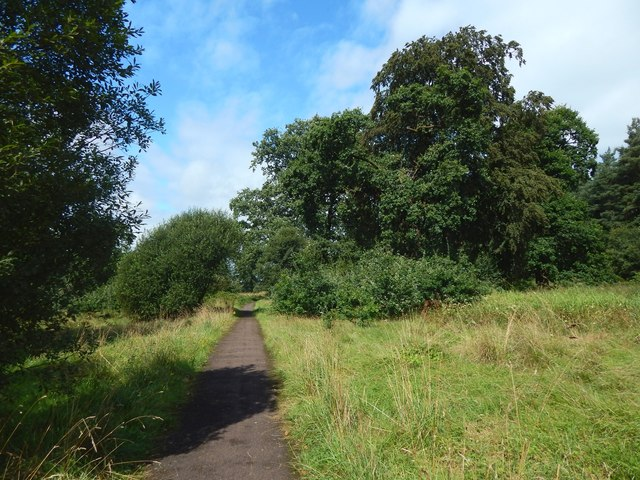 A path in the industrial estate