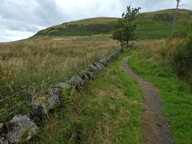 A path leading up Dunrod Hill