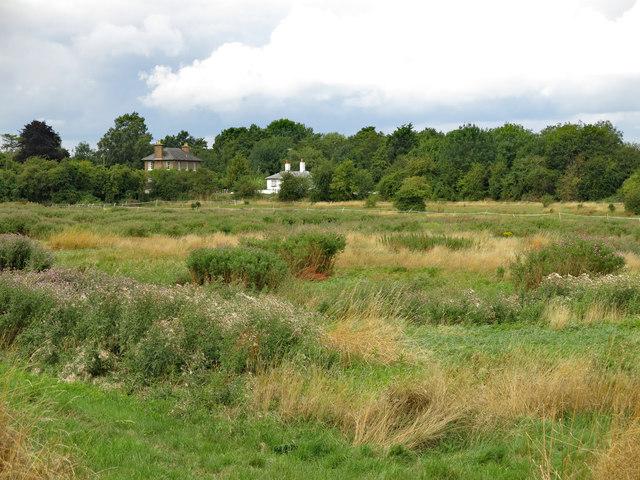 Scruffy horse-grazing pasture east of Stocker's Lock