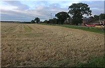 TL2556 : Field in Abbotsley by David Howard