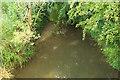 SU8346 : River Wey channel by Derek Harper