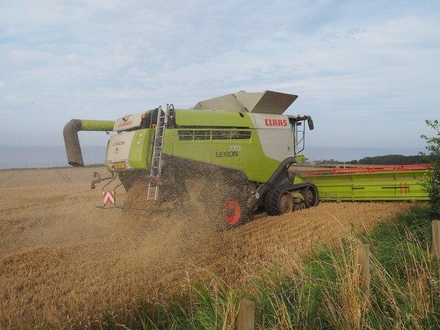 Claas Combine Harvesting Wheat at Birnieknowes
