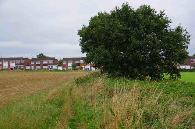 Public bridleway to Marlborough Drive, near Areley Kings, Stourport-on-Severn, Worcs