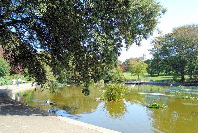 Queens Park Pond - Aug 2019