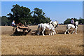 SJ4313 : Shrewsbury Steam Rally - large working field by Chris Allen