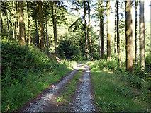 SN7673 : Estate road near Pont Dologau by John Lucas