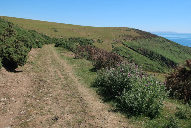 South West Coast Path through Netton Down