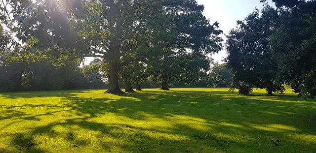 Oaks, Bell Hill Recreation Ground