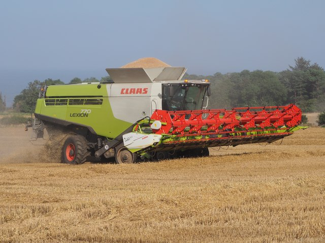 Claas Combine Harvesting Wheat at Birnieknowes