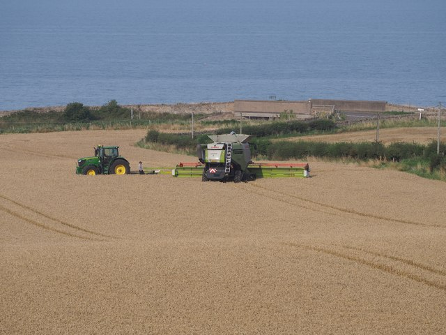 Claas Combine working in wheat fields at Birnieknowes