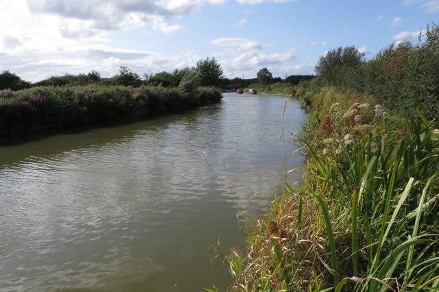 Grand Union Canal near Grove