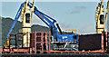 J3576 : Mantsinen 300 crane, Belfast harbour (August 2019) by Albert Bridge