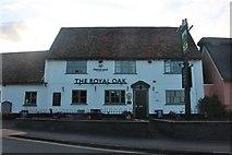 TL2249 : The Royal Oak, Potton by David Howard