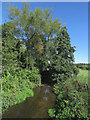 TL5139 : The Cam at Littlebury by John Sutton