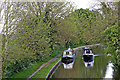 SK1509 : Coventry Canal south-east of Huddlesford in Staffordshire by Roger  Kidd