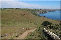SX5746 : South West Coast Path down Beacon Hill by Hugh Venables
