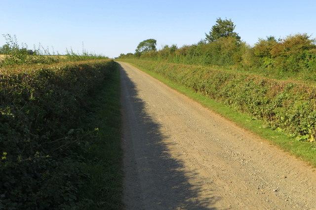 Byway towards Norton